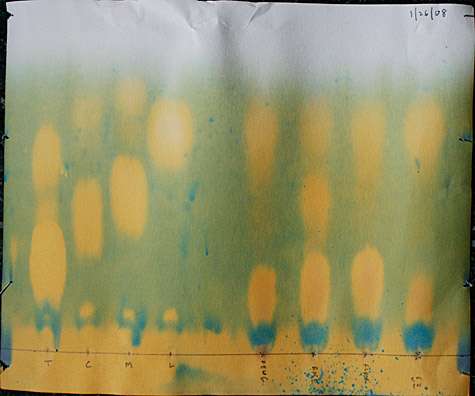 Paper chromatography results