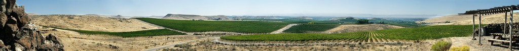Panorama from a viewpoint above Elephant Mountain Vineyard, looking south