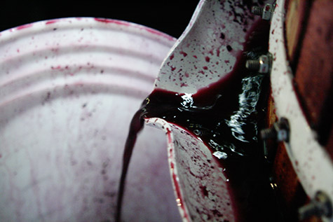 Precious drops of 2009 syrah dribble toward destiny